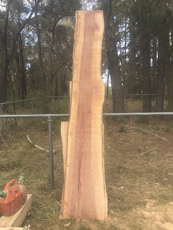 Canopy Tree Services Wood Milling & Slabbing