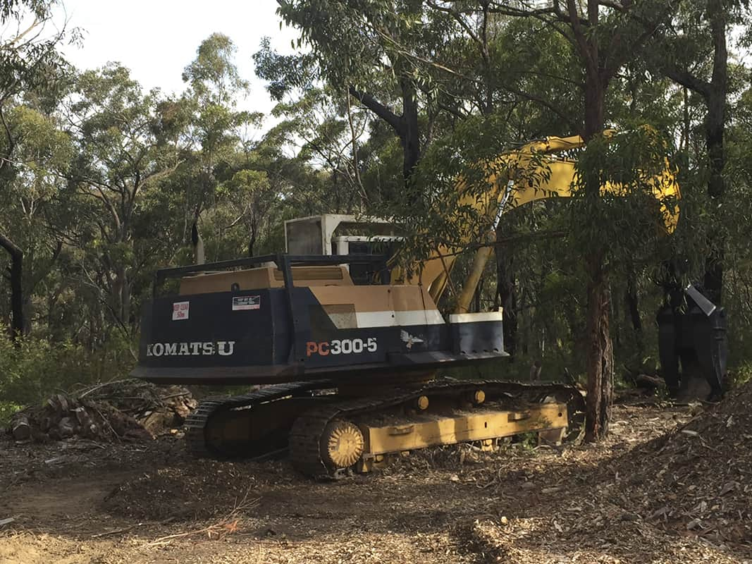 Canopy Tree Services - Vegetation Management & Land Clearing