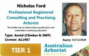 Arb License Nick Ford