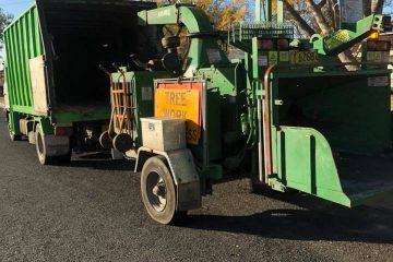 tree removal burradoo