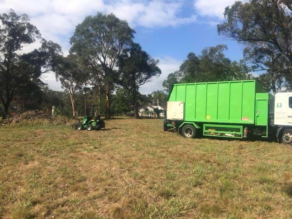 tree removal casula