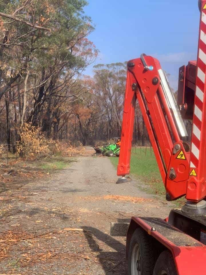 tree removal kangaloon