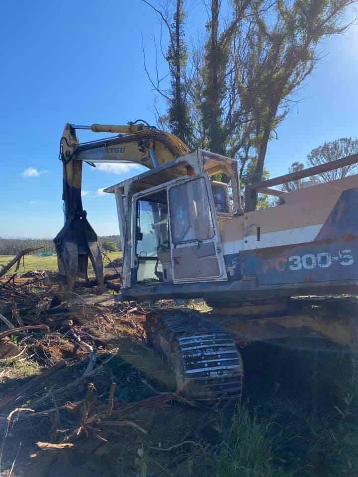tree removal theresa park